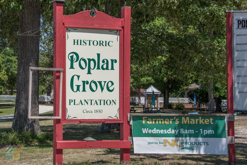 Poplar Grove Plantation