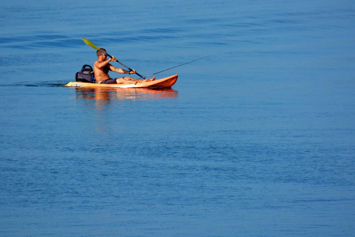 Cape Fear area Kayaking Guide