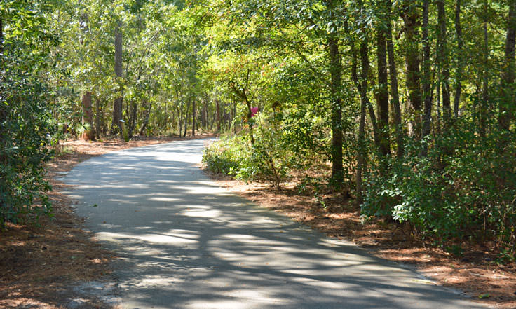 A walking path at Halyburton Park in Wilmington, NC